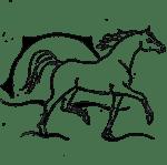Logo des Shagya-Araber Gestüt Mühlen -